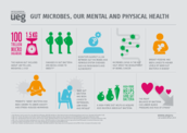 Gut Microbes, Our Mental and Physical Health